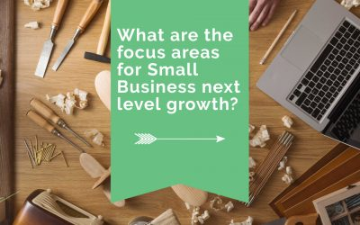 What are the focus areas for Small Business next level growth?
